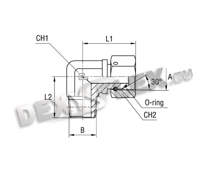 Leveling Parallel Nuts : Hoses dexyflex Аdapter with swivel nut bsp parallel